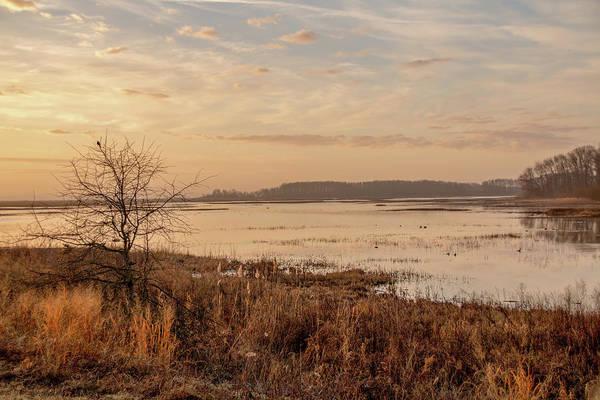 Photograph - Morning At Boombay Hook by Kristia Adams