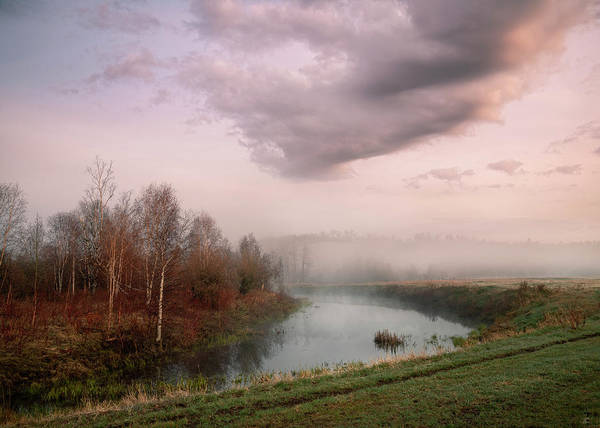 Photograph - Morning By The Oxbow by Dan Jurak