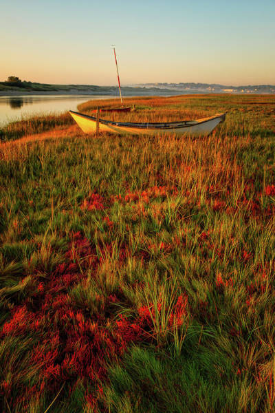Photograph - Morning Dory by Jeff Sinon