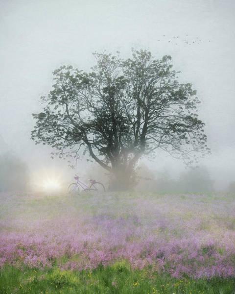 Blooming Tree Mixed Media - Morning Glory by Lori Deiter