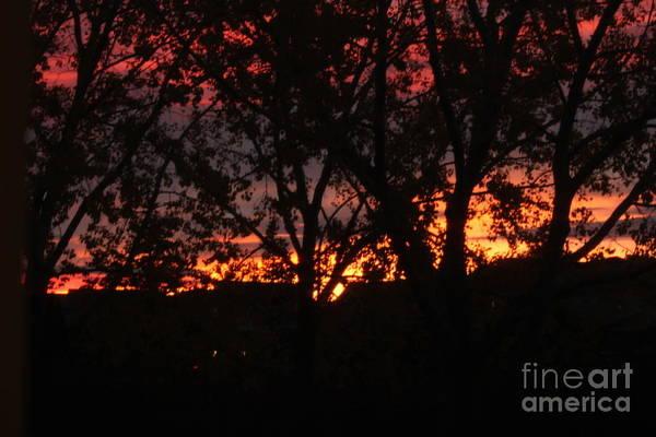 Photograph - Morning Glow by Ann E Robson