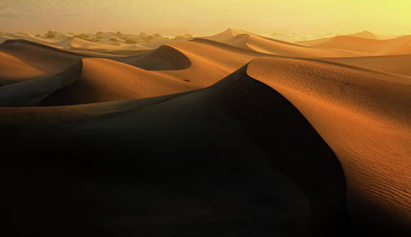 Great Sand Dunes National Park Photograph - Morning Glow On Dunes by David Toussaint