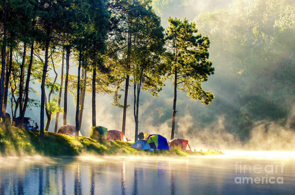 Float Wall Art - Photograph - Morning In Forest With Camping In The by Martinho Smart