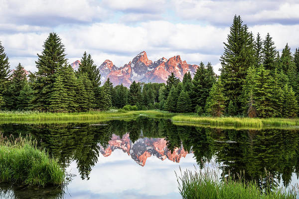 Photograph - Morning In The Tetons by Hamish Mitchell