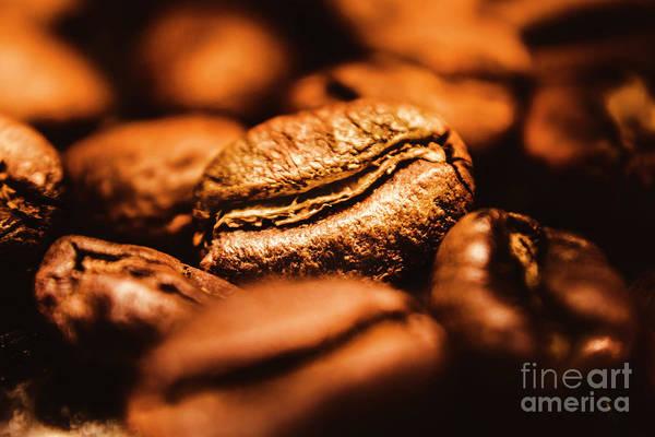 Photograph - Morning Light by Jorgo Photography - Wall Art Gallery