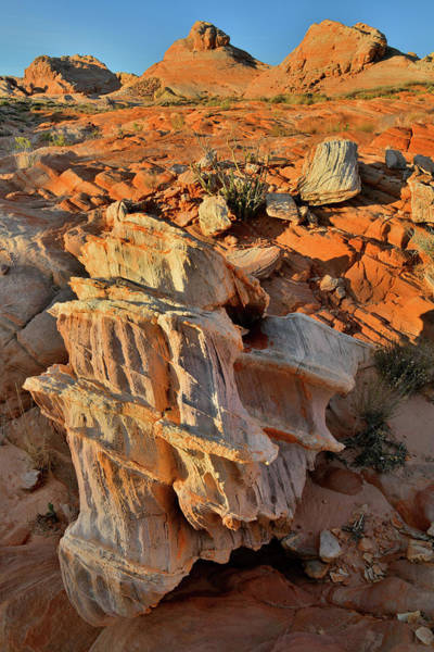 Photograph - Morning Light On Beautiful Sandstone Form In Valley Of Fire by Ray Mathis