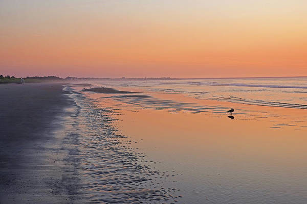 Photograph - Morning Light On Ogunquit Beach Ogunquit Maine Sunrise by Toby McGuire