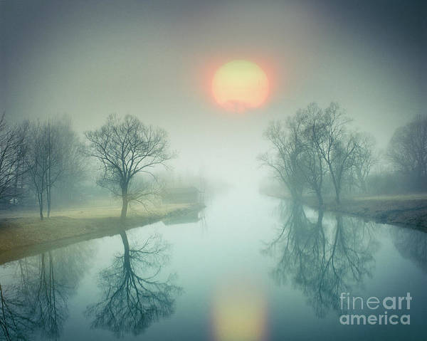 Morning Mist Art Print