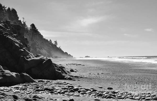 Photograph - Morning Mist by Jeni Gray