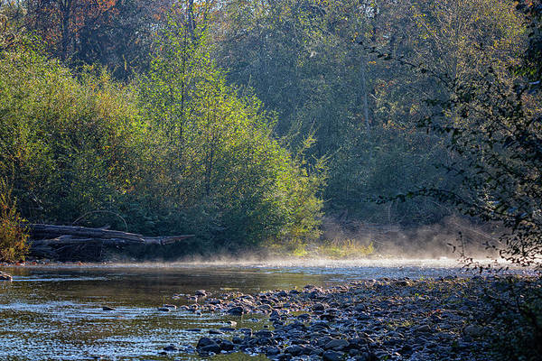 Photograph - Morning Mist by Randy Hall