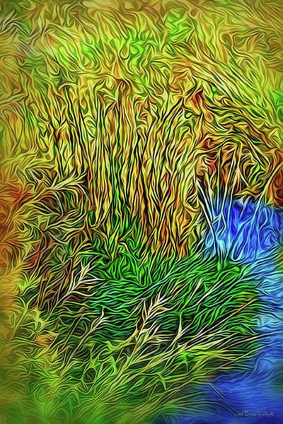 Digital Art - Morning Mist Streaming by Joel Bruce Wallach