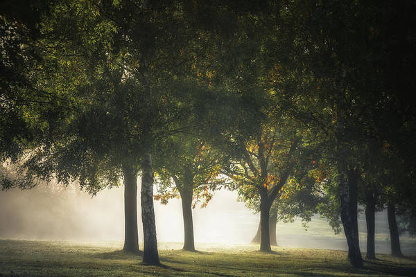 Photograph - Morning Misty Light Show No 5 by Chris Fletcher