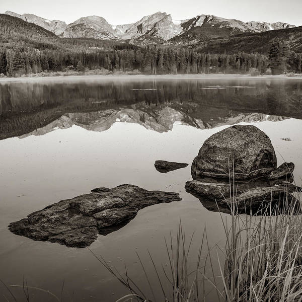 Photograph - Morning Mountain Light Over Sprague Lake - Rmnp Colorado Sepia by Gregory Ballos