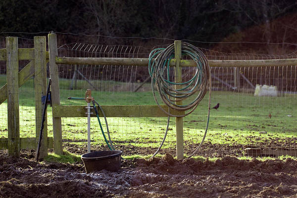 Faucet Photograph - Morning On The Farm by Charity Burggraaf