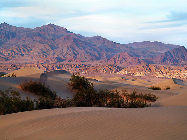 Death Valley Photograph - Morning On The Inyos by Joe Schofield