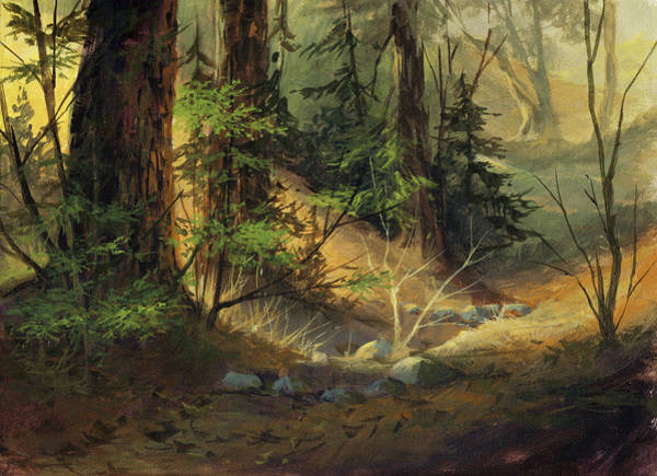 Shade Painting - Morning Redwoods by Michael Humphries