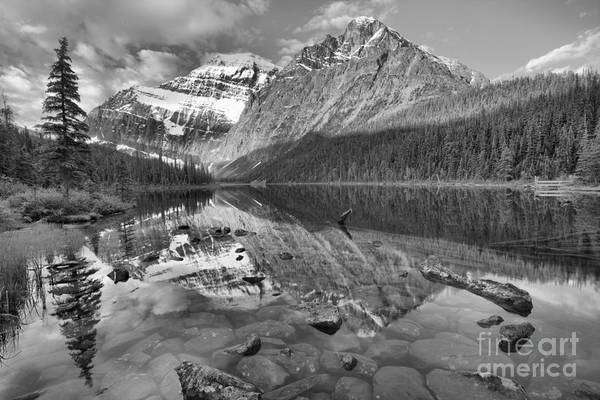 Photograph - Morning Reflections In Cavell Pond Black And White by Adam Jewell