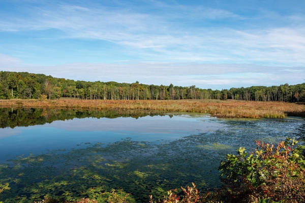 Photograph - Morning Reflections On Louisa Pond by Jeff Severson