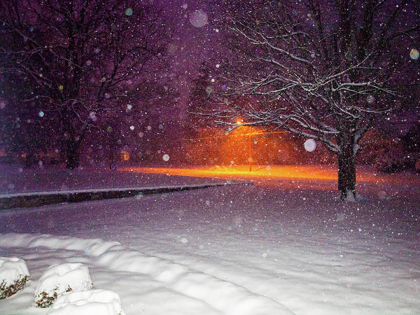 Photograph - Morning Snow by Randy Sylvia