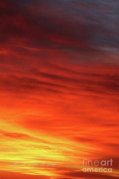 Photograph - Morning Sunrise Orange Yellow by Donna L Munro