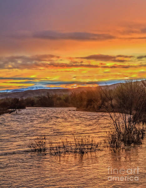 Wall Art - Photograph - Morning View Of Spring Flow by Robert Bales