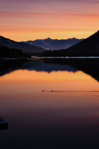 Nelson Bc Photograph - Mornings Perfect Secret by Joy McAdams