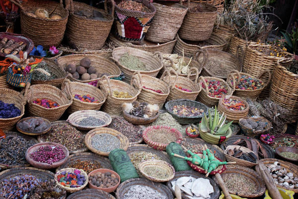 Photograph - Moroccan Herbalist by Jessica Levant