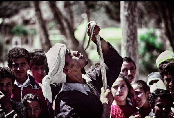 Photograph - Moroccan Snake Charmer by Robert Woodward