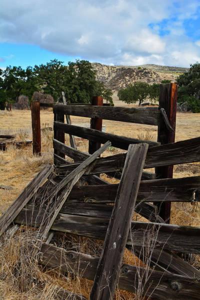 Photograph - Morrison Ranch Portrait by Kyle Hanson