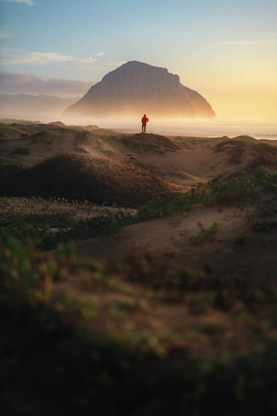 Photograph - Morro Bay by Ted Hesser