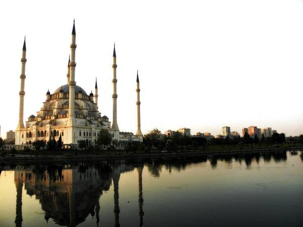 Mosque Photograph - Mosque In Turkey by Electravk