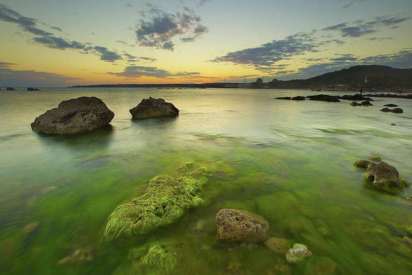 Wall Art - Photograph - Mossy Rocks by Sunrise@dawn Photography