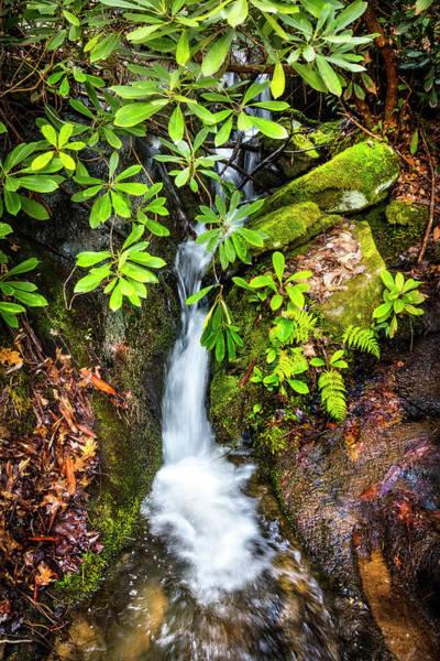 Wall Art - Photograph - Mossy Waterfall by Debra and Dave Vanderlaan