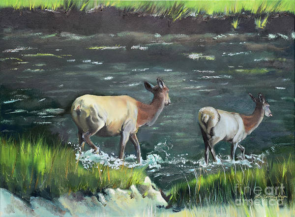 Painting - Mother Elk And Calf by Jan Dappen