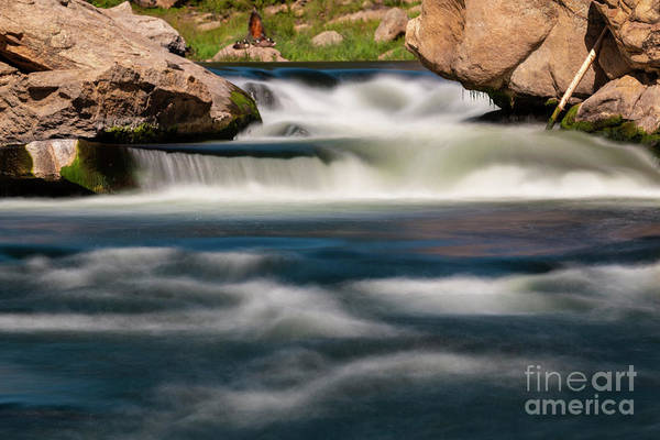Photograph - Motion Blur In Eleven Mile Canyon by Steve Krull