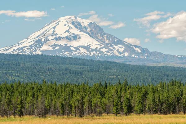 Photograph - Mount Adams In Summer by Loree Johnson