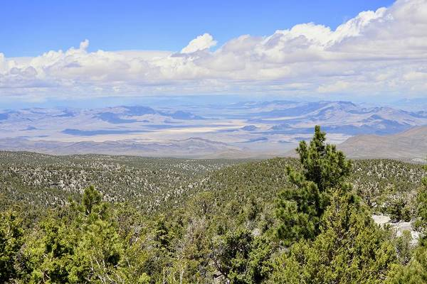 Photograph - Mount Charleston Vista Point by Sagittarius Viking