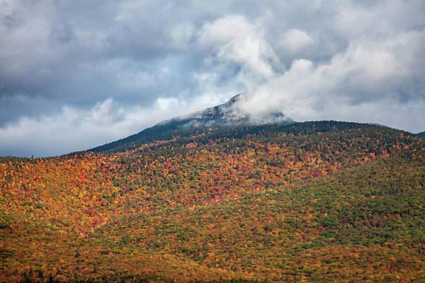 Photograph - Mount Chocorua Carpet Of Fall Colors by Jeff Folger