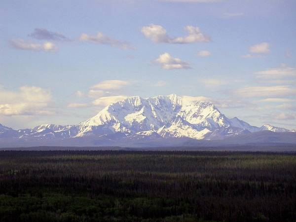 Photograph - Mount Drum Alaska by Mark Duehmig