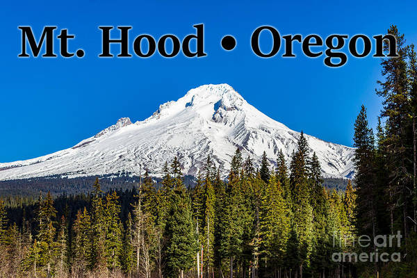 Photograph - Mount Hood Oregon In Winter 02 by G Matthew Laughton