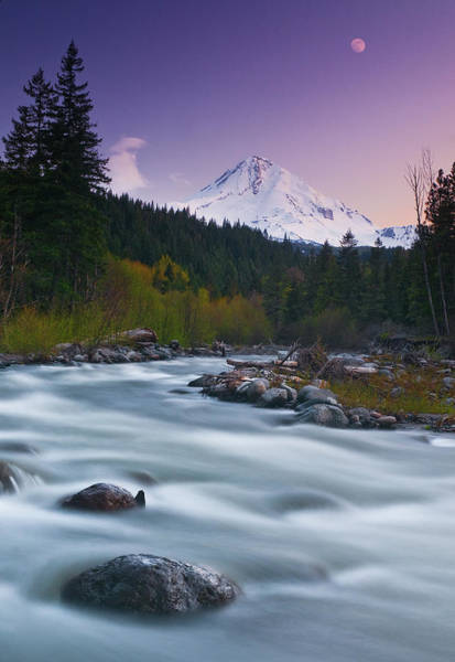 Mt Hood Photograph - Mount Hood Sunset Moon by Darren White Photography