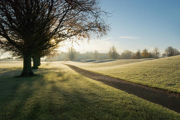 Golf Course Photograph - Mount Juliet Golf Course Covered In by Design Pics / Millan Knapik