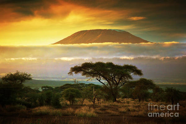Savanna Photograph - Mount Kilimanjaro And Clouds Line At by Photocreo Michal Bednarek