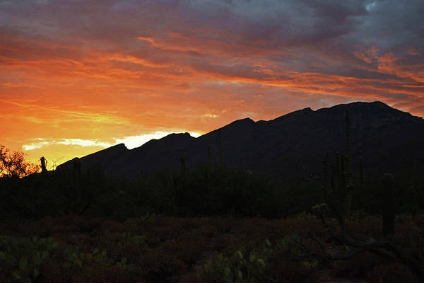 Photograph - Mount Kimball Sunset Glow, Tucson, Az by Chance Kafka