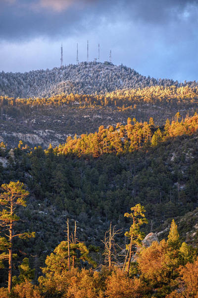 Photograph - Mount Lemmon Winter Last Light by Chance Kafka