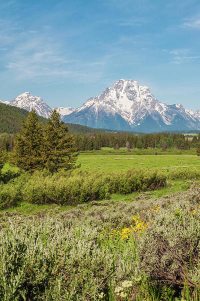 Wall Art - Photograph - Mount Moran View - Grand Teton National Park - Wyoming by Brian Harig