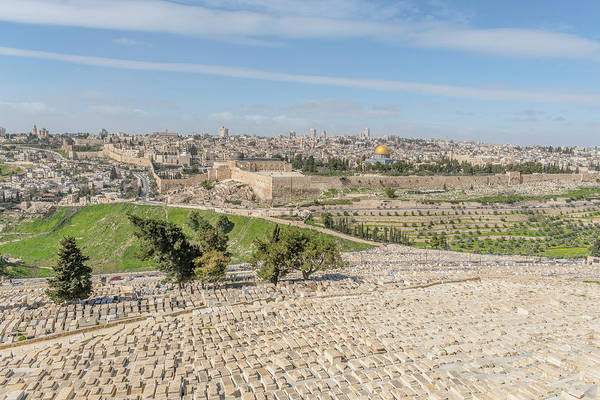 Wall Art - Photograph - Mount Of Olives Cemetery by Morris Finkelstein