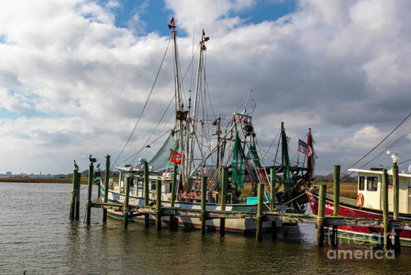 Wall Art - Photograph - Mount Pleasant Shrimper by Norma Brandsberg