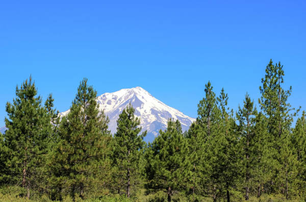 Photograph - Mount Shasta, California by Dawn Richards