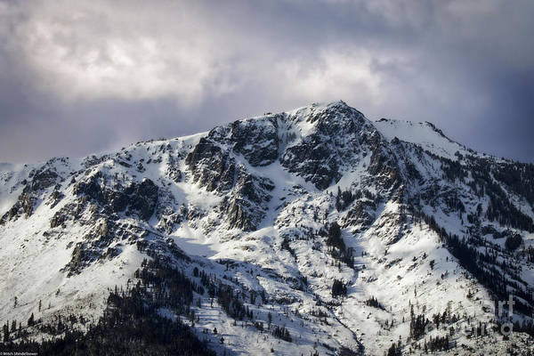 Wall Art - Photograph - Mount Tallac Snow by Mitch Shindelbower